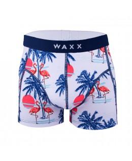 Moške spodnje hlače Tropico